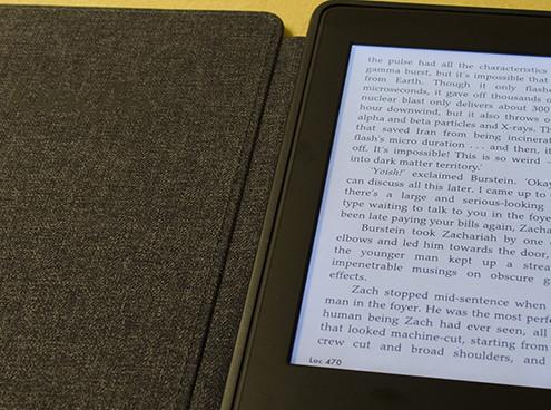 Gastartikel von Kevin Schmitz Ebook Reader