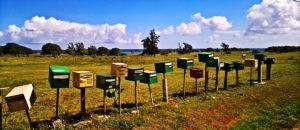 DSGVO: Führt der Newsletter-Niedergang zur Renaissance postalischer Mailings?